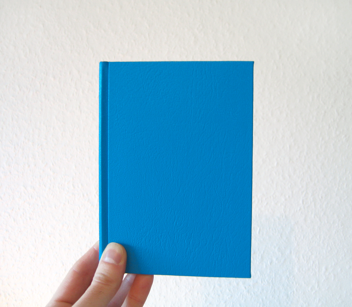 livre-bleu-36